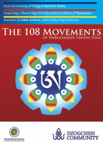 dvd-108_movements-eng